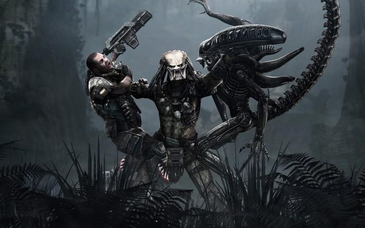 Fonds D Ecran Jeux Video Fonds D Ecran Alien Vs Predator Requiem Aliens Vs Predator Par Djsp0k3 Hebus Com