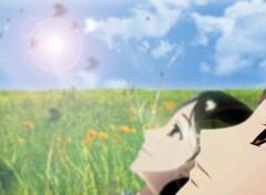 Fonds d'écran Manga lucioles