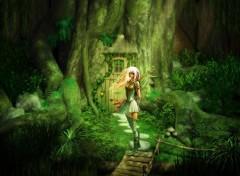 Fonds d'écran Fantasy et Science Fiction La Clairière des Elfes