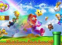 Wallpapers Video Games New Super Mario Bros. Wii