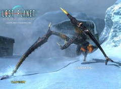 Wallpapers Video Games Lost Planet : Extreme Condition