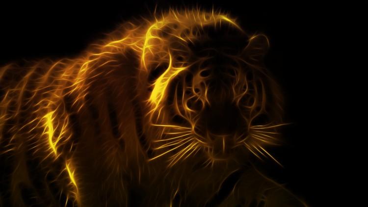 Fonds d'écran Animaux Félins - Tigres tigre new generation