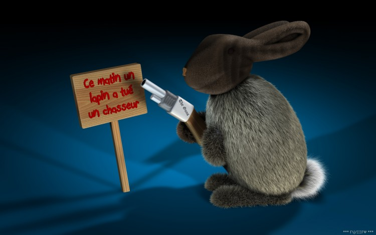 Wallpapers Humor Animals Ce Matin Un Lapin a Tué Un Chasseur