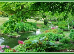 Wallpapers Nature Jardin de printemps.