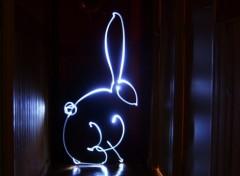 Photos Abstrait - Art The Rabbit