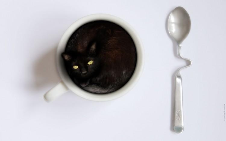 Wallpapers Animals Cats - Kittens Le Pti Noir - Chat noir dans une tasse à café