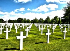 Wallpapers Trips : Europ Normandy American Cemetery and Memorial