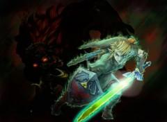 Fonds d'écran Jeux Vidéo Link contre Ganondorf