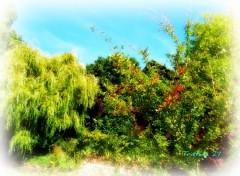 Wallpapers Nature Paysage de Normandie...