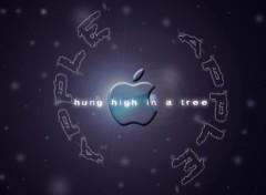 Fonds d'écran Informatique apple-three-one