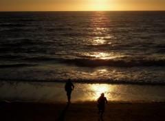 Fonds d'écran Nature coucher de soleil