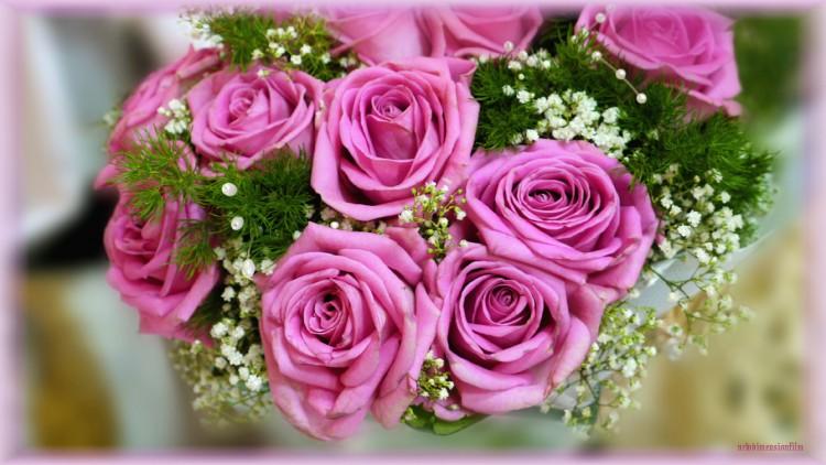 Fonds D Ecran Nature Fonds D Ecran Fleurs Bouquet De Mariee Par