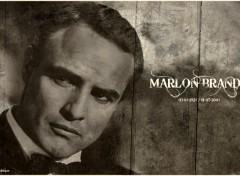 Fonds d'écran Célébrités Homme Marlon Brando