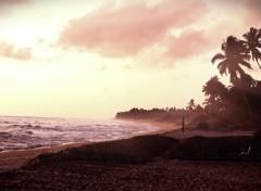 Fonds d'écran Voyages : Asie Sri lanka