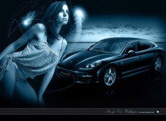 Fonds d'écran Voitures Pin-up Car wallpaper 2010 porsche panamera