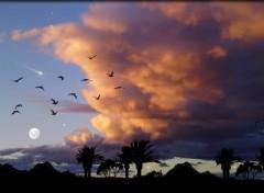 Fonds d'écran Nature Coucher de soleil dans l'Hérault (34)