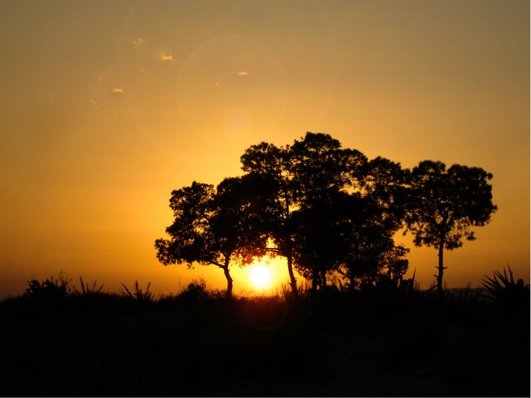 Wallpapers Nature Sunsets and sunrises Quelque part en Afrique