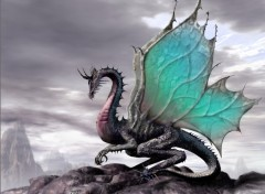 Wallpapers Fantasy and Science Fiction dragon émeraude