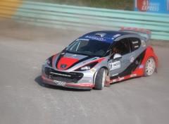 Fonds d'écran Voitures Peugeot 207 WRC en glisse