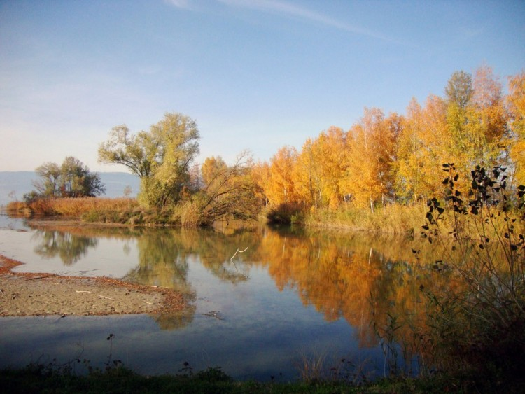 Wallpapers Nature Seasons - Fall automne