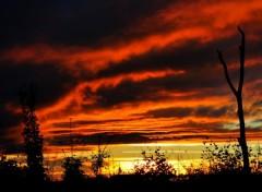 Fonds d'écran Art - Numérique COUCHer of sun  soleil ........
