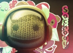 Wallpapers Video Games Sackboy
