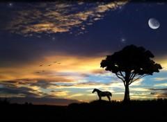 Fonds d'écran Nature Lever de soleil dans l'Hérault coucher aube aurore crépuscule