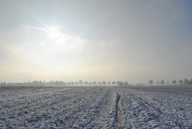 Fonds d'écran Nature Saisons - Hiver Natural bleu  ;-)