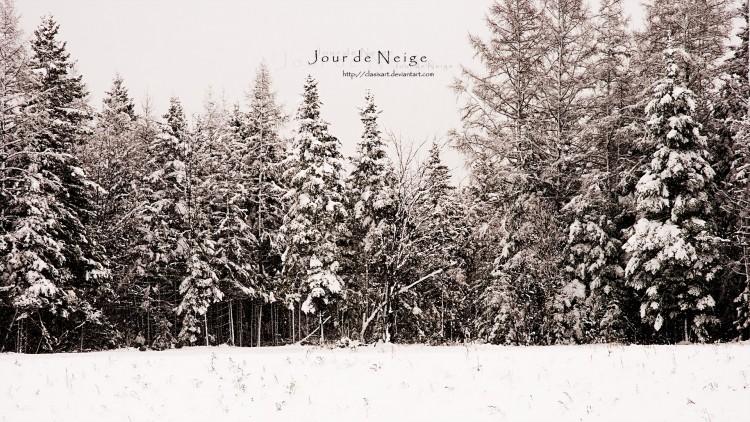 Fonds d'écran Nature Saisons - Hiver Jour de Neige