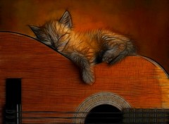 Wallpapers Animals Chaton et sa guitare