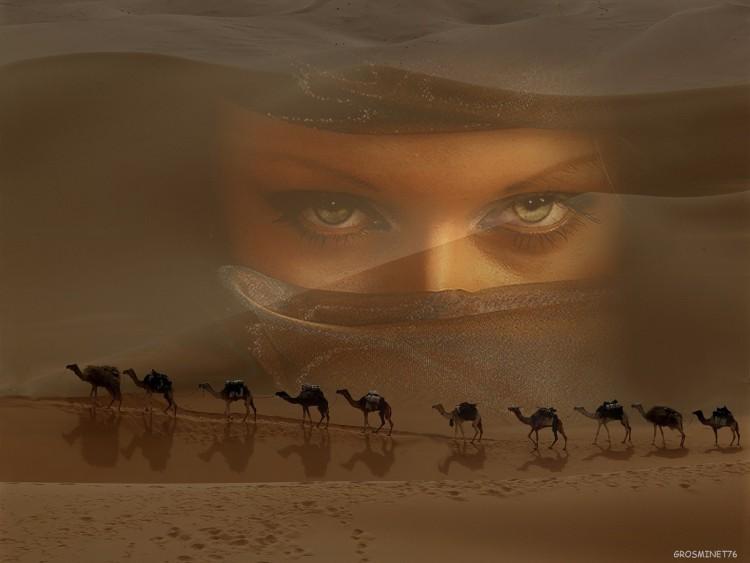 Wallpapers Fantasy and Science Fiction Fantasy Landscapes les yeux du desert