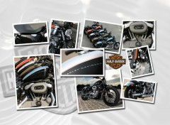 Wallpapers Motorbikes No name picture N°273838