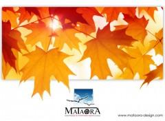 Fonds d'écran Grandes marques et publicité Mataora
