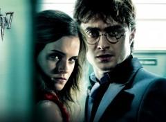 Fonds d'écran Cinéma Harry Potter et les Reliques de la Mort