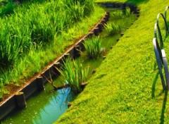 Fonds d'écran Voyages : Asie Sankeien Garden - Yokohama