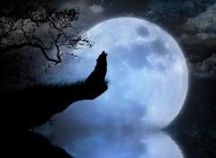 Fonds d'écran Art - Numérique loups au clair de lune