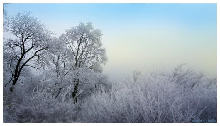 Wallpapers Nature Saisons - Winter D'hiver, le froid et calme.2.