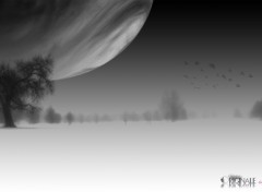 Wallpapers Digital Art soir de grosse lune