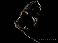 Wallpapers Movies predators