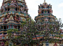 Wallpapers Constructions and architecture Temple Indou & frangipanier