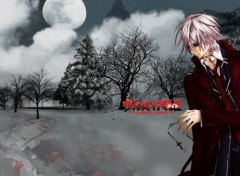Wallpapers Manga vampire knight - kiryu zero