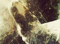 Photos Abstrait - Art Schizophrenic Prayer I