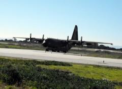Fonds d'écran Avions avion c-130 de l'armee de l'air portugaise