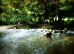 Fonds d'écran Nature Image sans titre N°279952