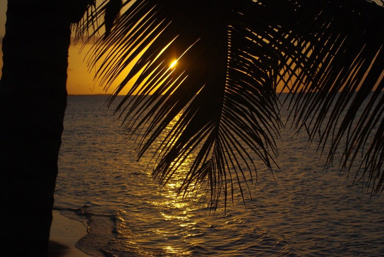 Wallpapers Trips : North America Guadeloupe Guadeloupe