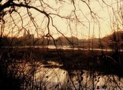 Fonds d'écran Nature La  Loire