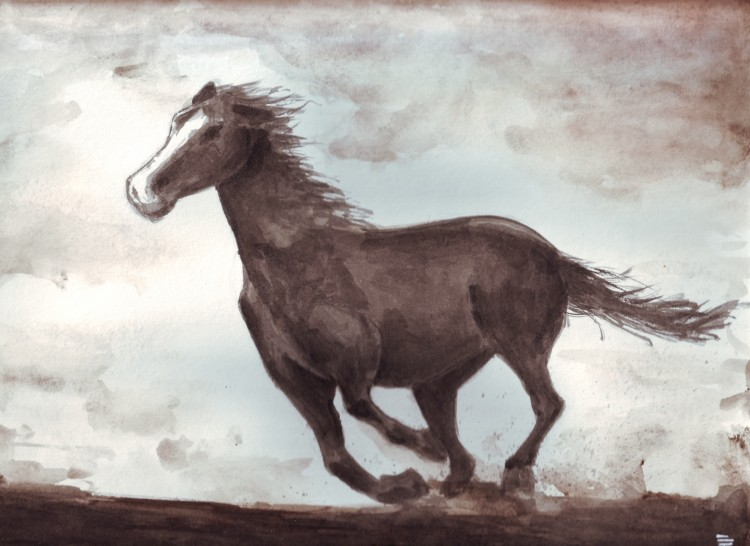 Wallpapers Art - Painting Animals cheval sauvage