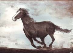 Wallpapers Art - Painting cheval sauvage