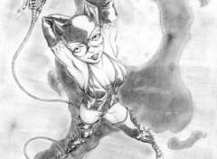Fonds d'écran Art - Crayon catwoman