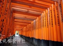 Fonds d'écran Voyages : Asie fushimi inari jinja
